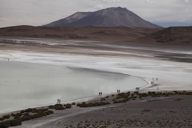 Laguna Blanca, Bolivya Gezisi