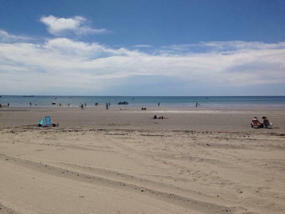 Puerto Madryn sahili