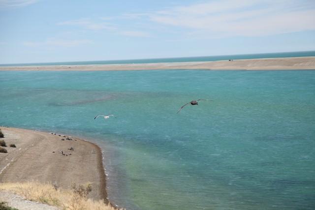 Patagonya gezi notları